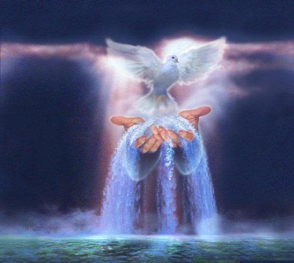 Impeto d'Amore. Sacro Cuore di Gesù